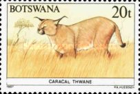 [Animals of Botswana, type OW]
