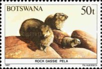[Animals of Botswana, Typ PB]