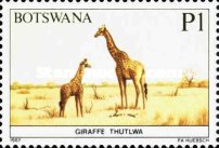 [Animals of Botswana, type PC]