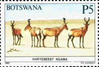 [Animals of Botswana, type PF]