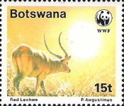 [Red Lechwe, Typ PP]