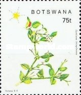 [Flowering Plants of Southeast Botswana, Typ QH]