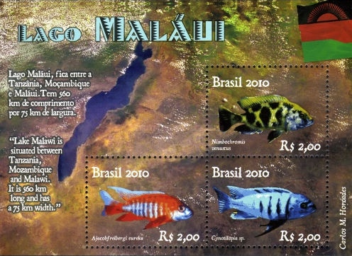 [Fish - Diplomatic Relations - Brazil-Malawi, type ]