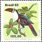 [Toucans, type BVI]