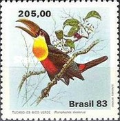 [Toucans, type BVJ]
