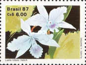 [The 50th Anniversary of the Brazilian Orchid Growers Society, type CFU]