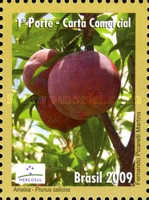 [Mercosul - Export Products - Fruit, type EEH]