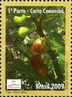 [Mercosul - Export Products - Fruit, type EEN]