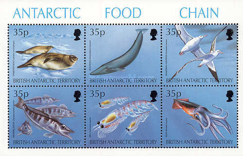 [Food Chains in the Antarctic, Typ ]