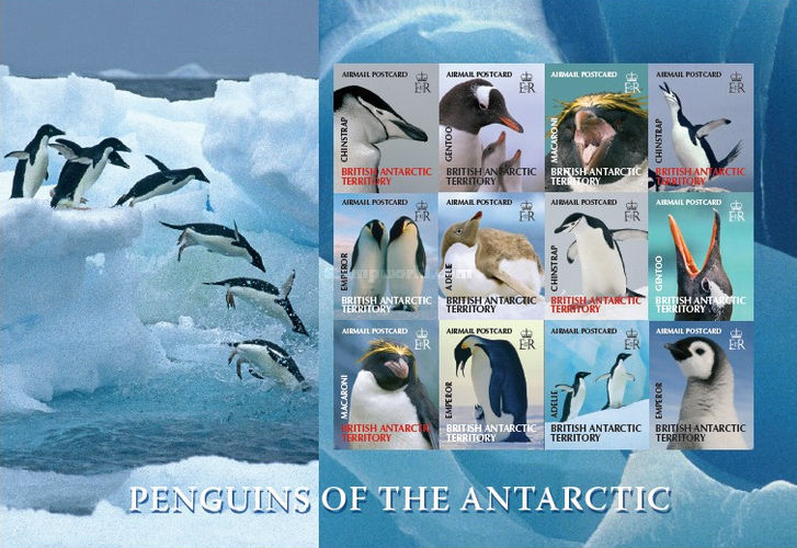 [Fauna - Penguins of the Antarctic, Typ ]