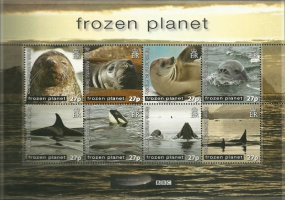 [Frozen Planet - Seals & Whales, Typ ]