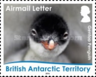 [Birds - Life Cycle of the Gentoo Penguin, Typ ABH]