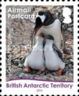 [Birds - Life Cycle of the Gentoo Penguin - Self Adhesive Paper, Typ ABJ1]