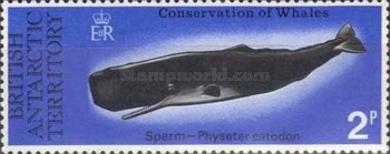 [Conservation of Whales, type AX]
