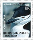 [Penguins - Self Adhesive Stamps, Typ XD]