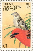 [Birds, type CL]