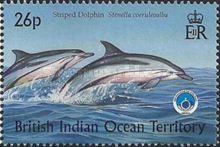 [Whales & Dolphins - International Year of the Ocean, type HB]