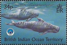 [Whales & Dolphins - International Year of the Ocean, type HD]