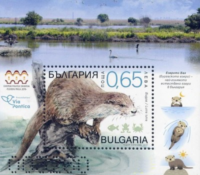 [Fauna - Eurasian Otter - Protected Speces in Burgas Lake, type ]
