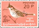 [Burma Postage Stamp Overprinted in Burmese - Birds, type Q5]