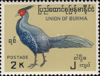 [Burmese Birds, Typ DO]