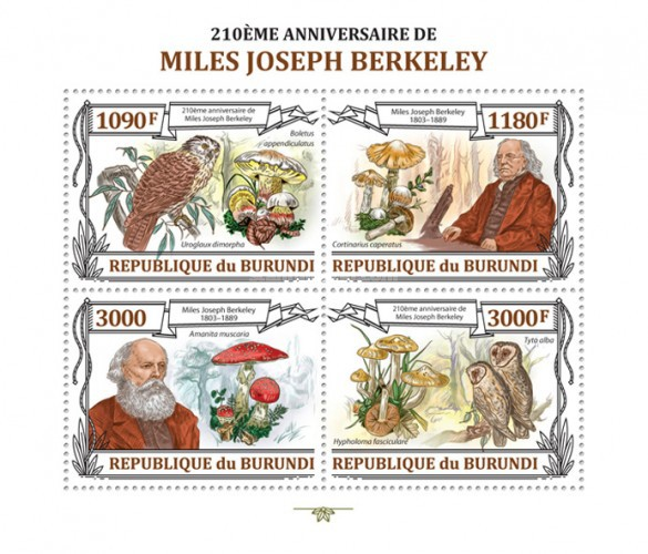 [The 210th Anniversary of Miles Joseph Berkeley, Typ ]