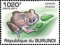 [Fauna - Frogs, Typ BOO]