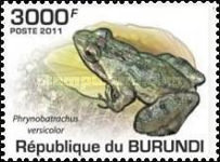[Fauna - Frogs, Typ BOR]