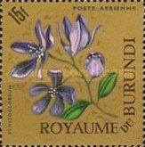 [Airmail - Flowers, type EY2]
