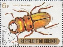 [Airmail - Beetles, Typ PS2]