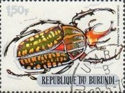 [Beetles, Typ PT]