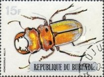 [Beetles, Typ PW1]