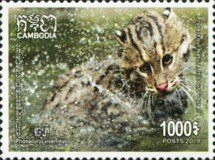 [Fishing Cat of Cambodia, Typ CPA]