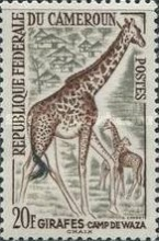 [Postage Stamps - Animals, type CN]