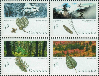 [Canadian Forests, Typ ]