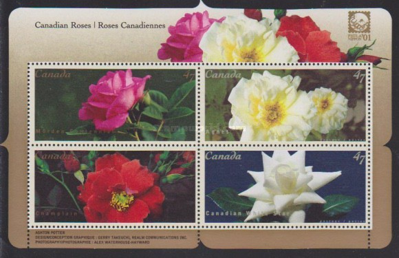 [Canadian Roses, Typ ]