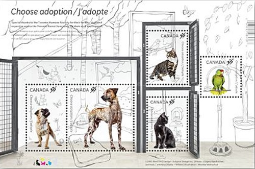 [Domestic Animals - Adopt a Pet, Typ ]