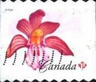[Flowers - Coil Stamps, Imperforated Vertical, Typ CML]