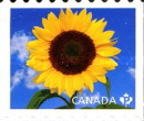 [Flora - Sunflowers. Self Adhesive Stamps, Typ CWZ]