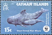 [Endangered Species - Short-finned Pilot Whale, Typ AFF]