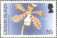 [Orchids, Typ AGL]