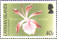 [Orchids, Typ AGN]