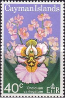 [Orchids, Typ FX]