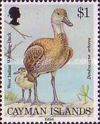 [Birds - West Indian Whistling Duck, Typ VY]