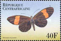 [Butterflies from Around the World, type CLH]
