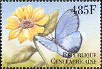 [Butterflies from Around the World, type CLL]