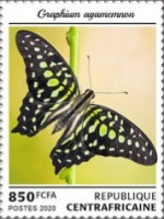 [Insects - Butterflies, Typ MLL]