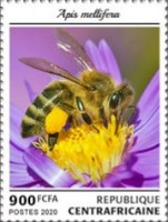 [Insects - Bees, Typ MMK]