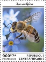 [Insects - Bees, Typ MML]