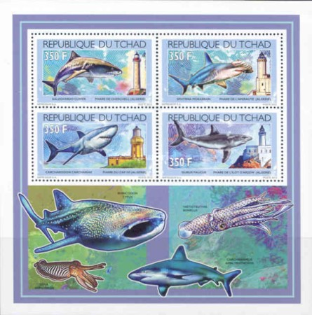 [Sharks & Lighthouses, type ]